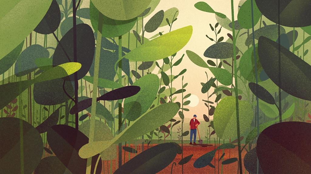Illustration of overgrown farmland